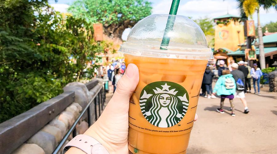 Starbucks Cup at Animal Kingdom